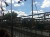laughton-august-2011001023