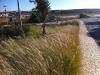 laughton-august-2011001058